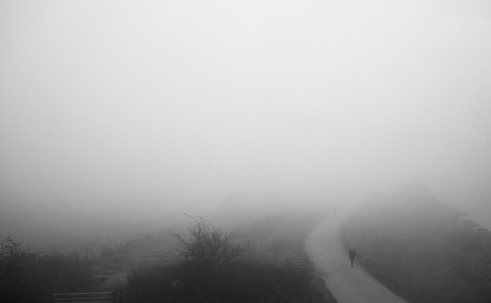 fog-020