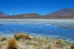 uyuni_flamingoes2