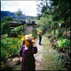Children play in the vegetable garden making daisy chains.