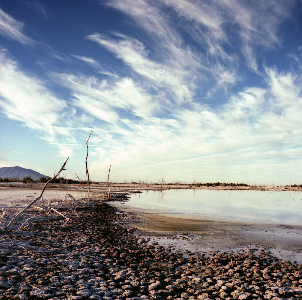 essay salton sea See what it's like to live in salton sea beach, ca explore reviews and statistics on crime, real estate, and cost of living.