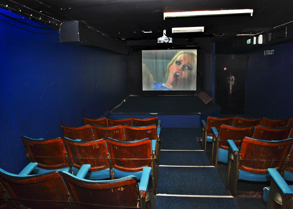 The Porn Cinema 40