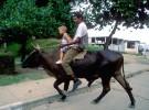 CUBA---Moshe-Shai---14