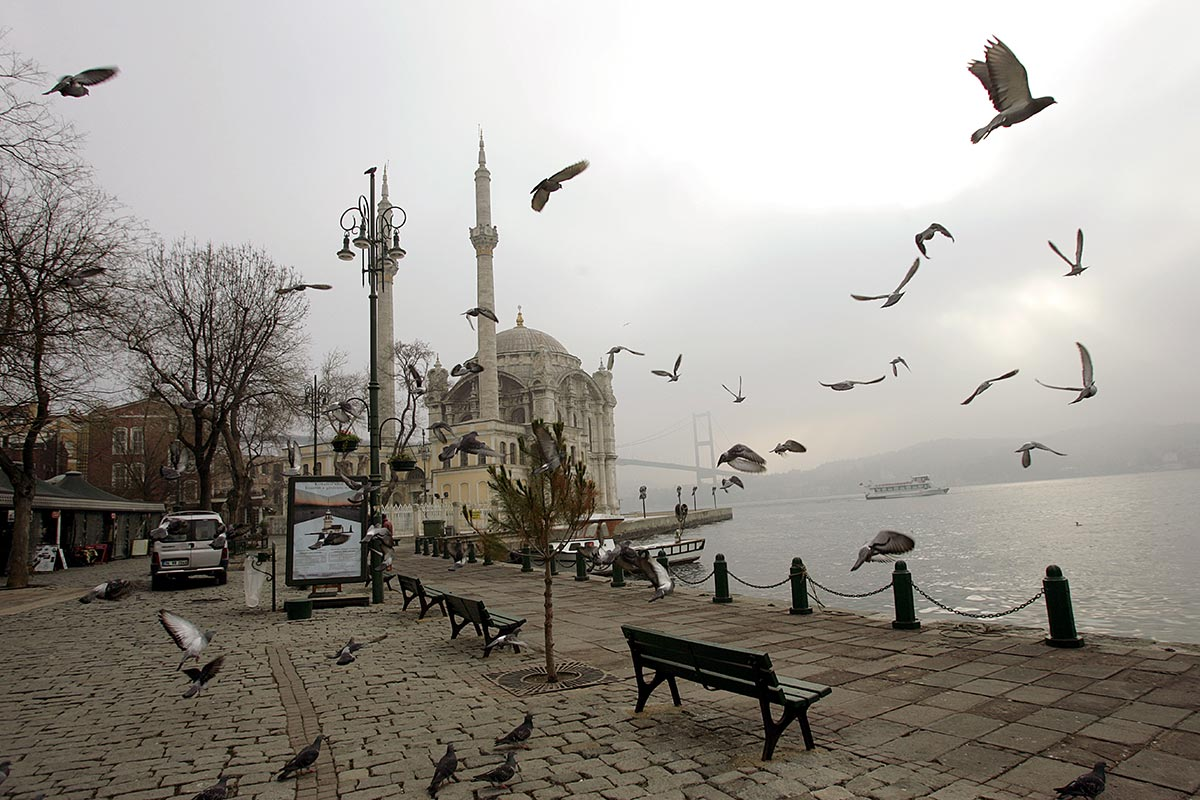Istanbul \ Turkey