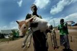 SUDAN---Moshe-Shai---75