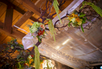 Chuppah-at-Carondelet-house-in-Los-Angeles
