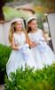 lindsay_schoneweis_alexander_davis_wedding025_