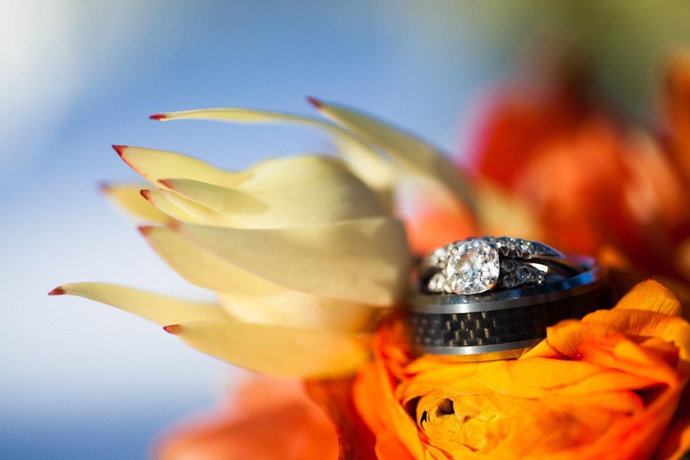 081212_cait_matt_hutchison_wedding-45-470