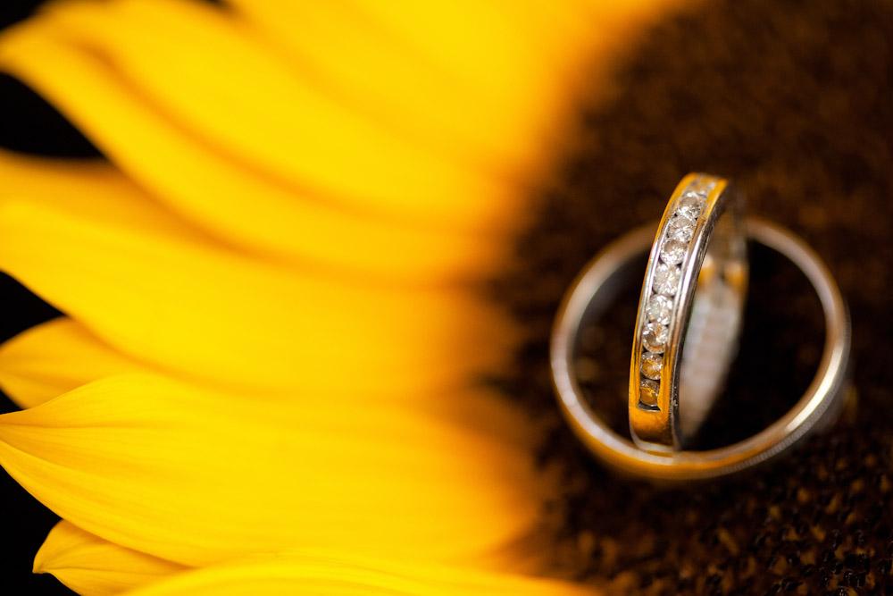 081511_darlene_kevin_wedding_portraits-3-2