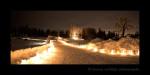 Luminara- Devonian Botanic Gardens