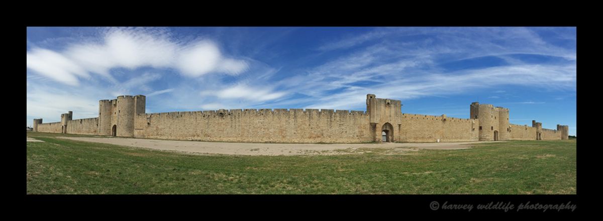 Picture of Aigues Mortes, built in 1240 by Louis IX.