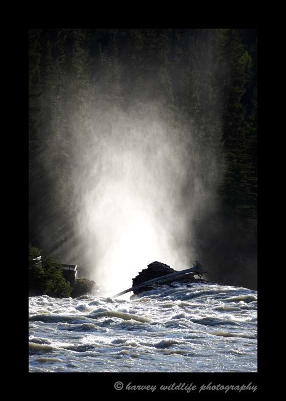 This is an image of Athabasca Falls from the back. It is a different view as the light hits the mist rising from the river.