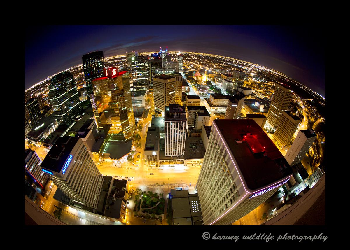 City_Of_Edmonton_II_2014