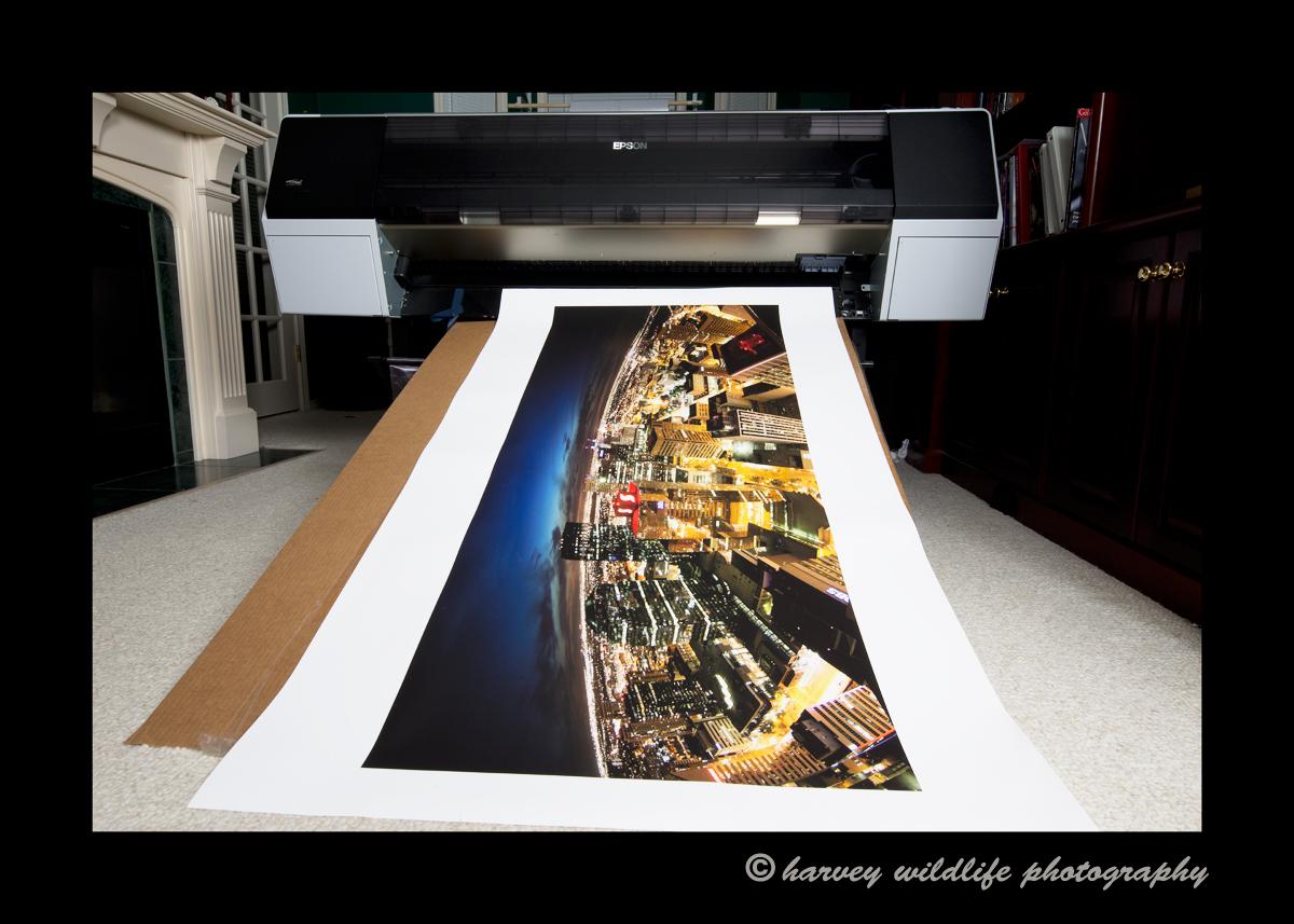 Epson_printer_9900
