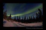 Green Northern Lights 2015