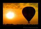 Gaye took this image of the sunrise as we were in another hot air balloon.