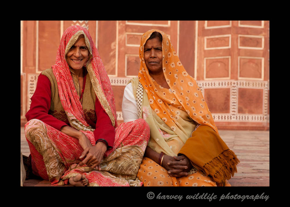These women enjoyed the attention of having their picture taken. They look great in their saris. I really enjoyed photographing them.