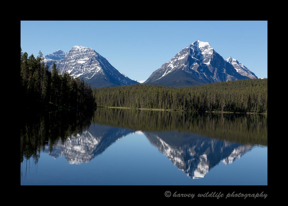 Jasper Mountain Reflections