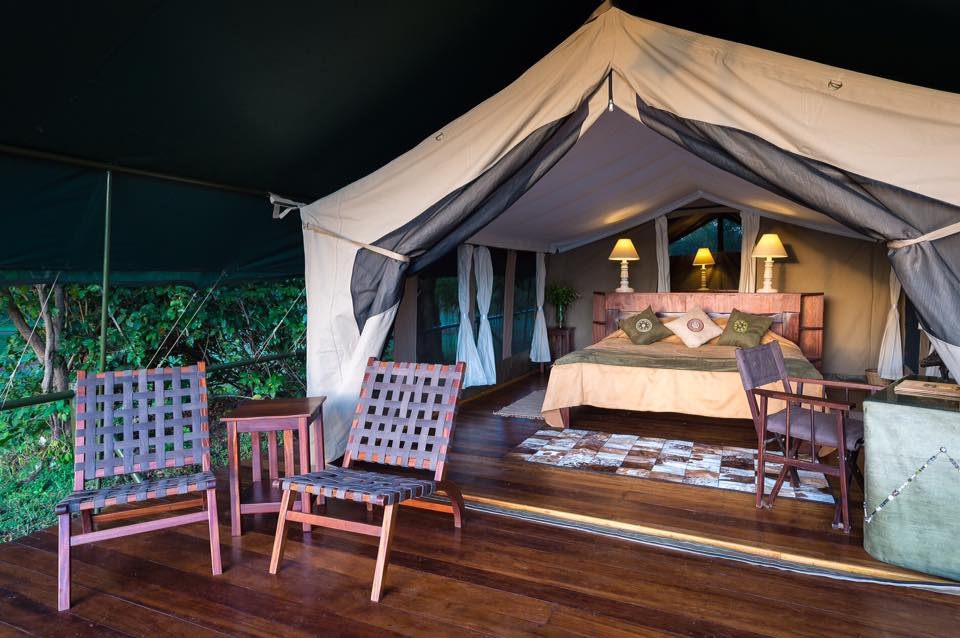 Little Governors' Camp Tent