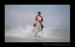 Picture of a man on a Camargue horse galloping in an etang in Southern France. Photograph by Harvey Wildlife Photography. This image was edited to resemble an oil paiting.