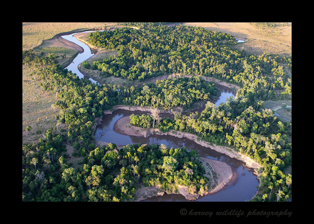 Mara River Horizontal from Hot Air Balloon
