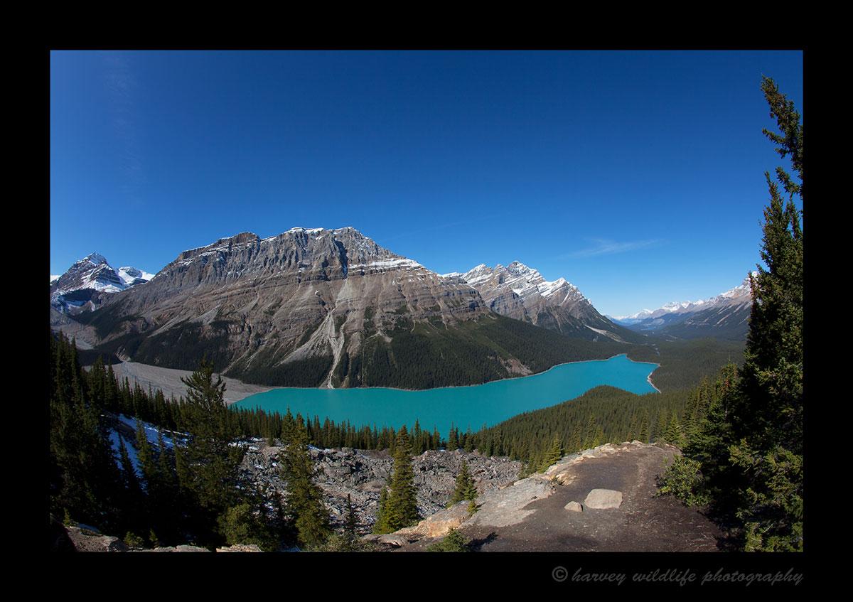 Peyto_Lake
