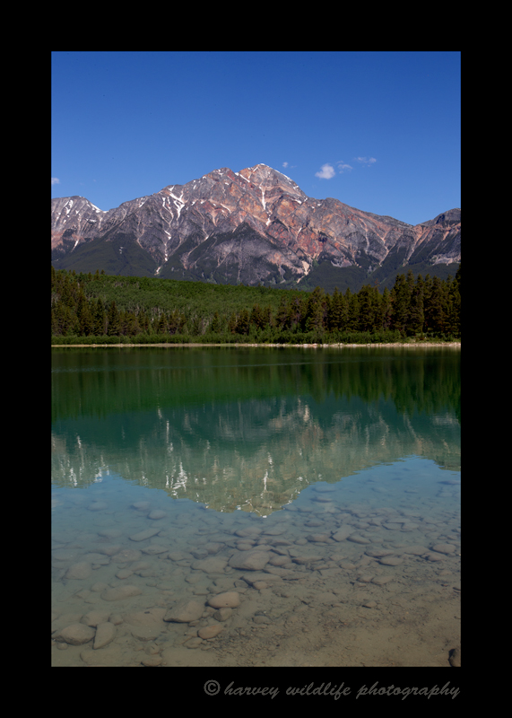 This image shows Patricia Lake reflecting Pyramid Mountain. It isn't often that the lake is still so when there is no breeze, disrupting the reflection, it's wise to rush over for a quick picture.