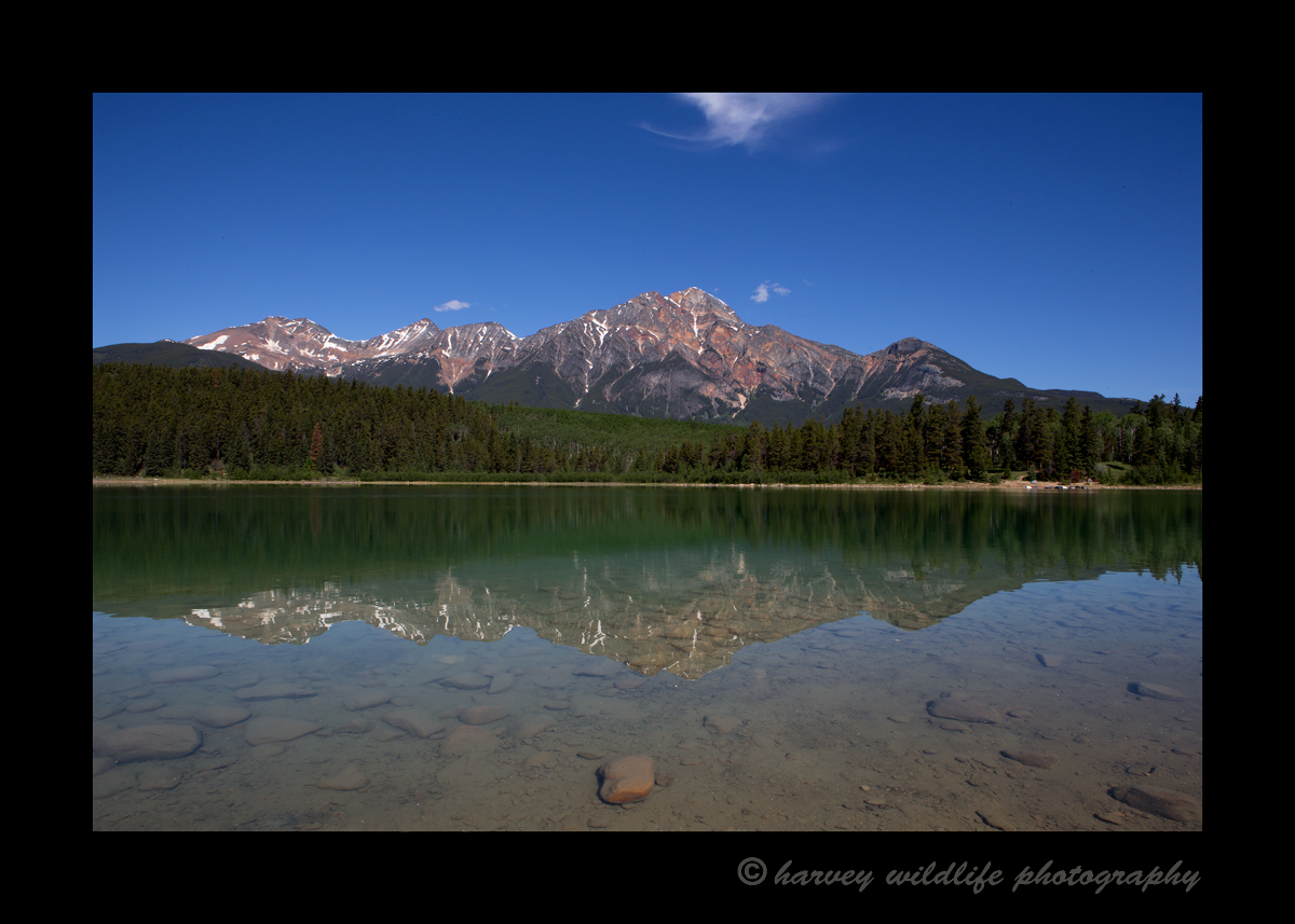 It isn't often that the lake is calm, so when I noticed that there was very little breeze I rushed over to Patricia Lake to see if I could get a shot of a glass lake reflecting the mountain above.
