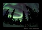 Swirling_Aurora_Borealis