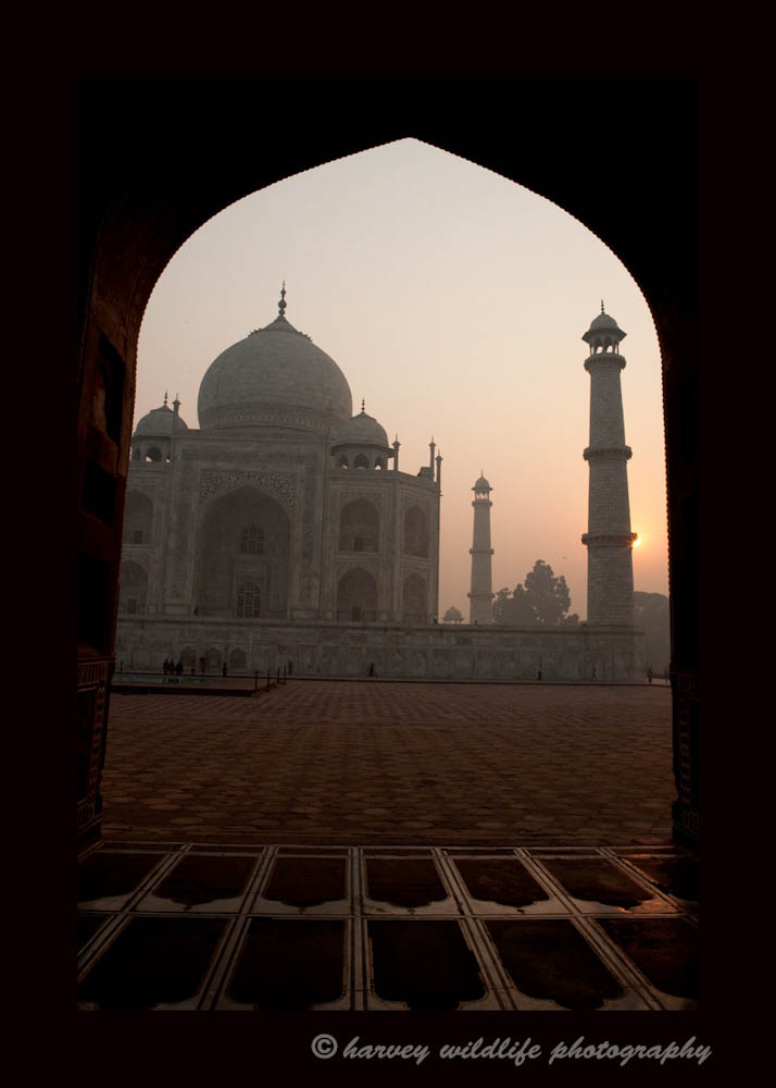 This photograph was taken from the masoleum on the east side, looking west as the sun is rising over the Taj Mahal