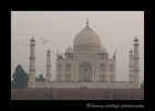 This picture was taken directly across the river from the Taj Mahal.