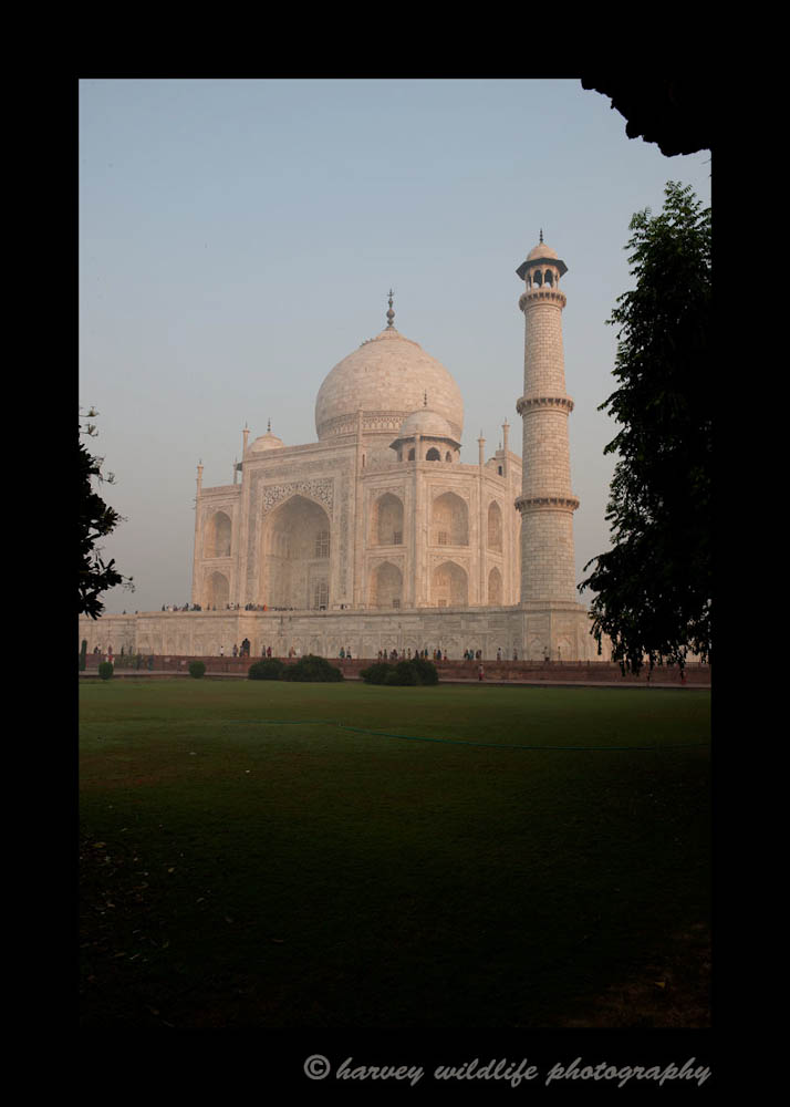 Taj Mahal Grounds View Portrait