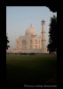 Taj Mahal Grounds View Portrait