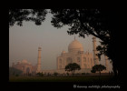 This photograph was taken from the grounds in the Taj Mahal. There is a masoleum on either side of the Taj. The building on the left is the masoleum on the east side.