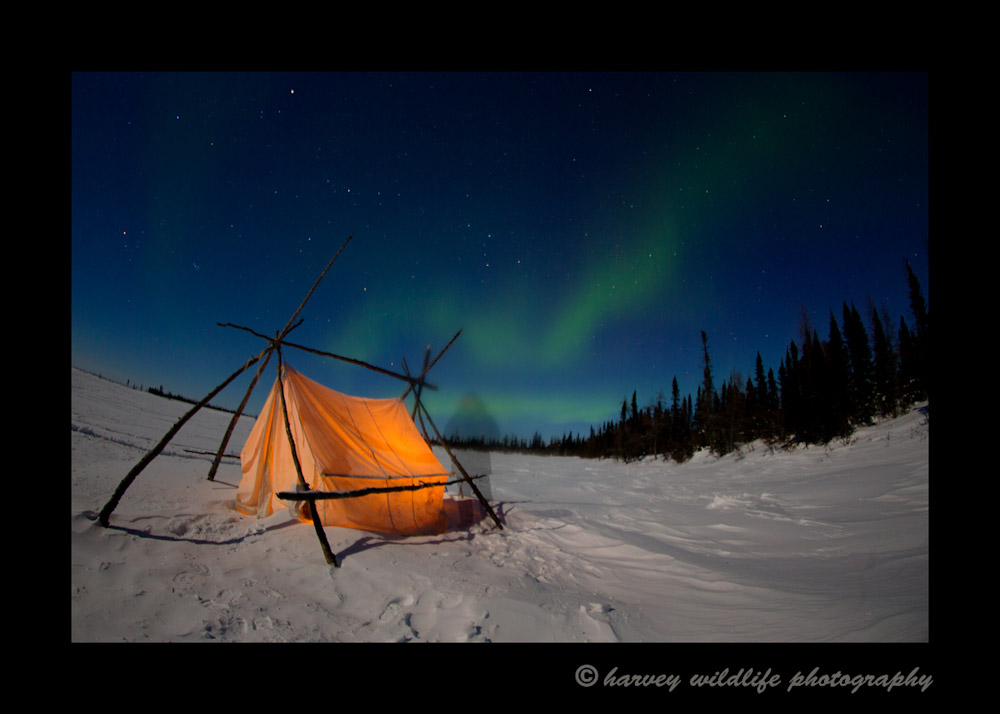 Photographing the northern lights at 2a.m. at -40 is always fun. On this timed exposure, my subject stayed just long enough to create a ghost image by the tent.