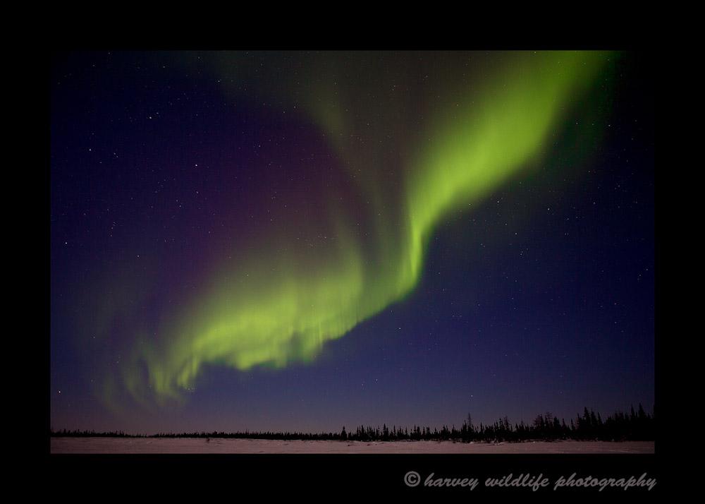 green_northern_lights