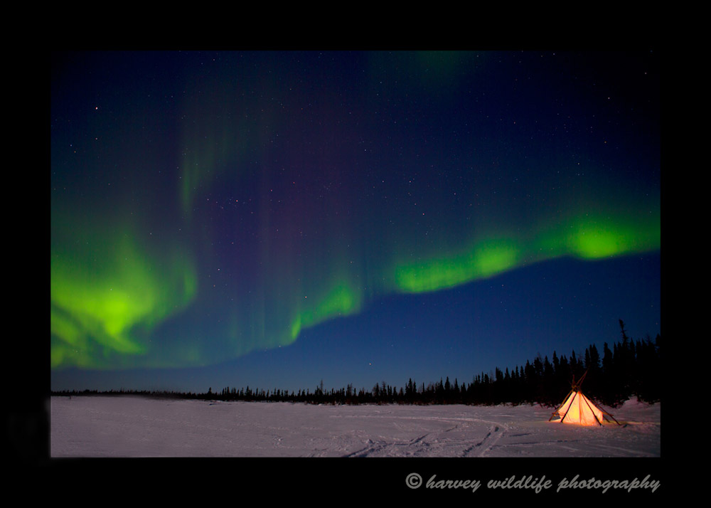 northern_lights_14