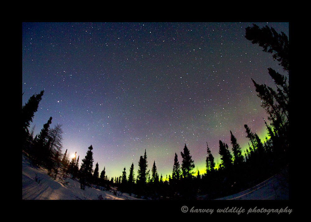 northern_lights_fisheye