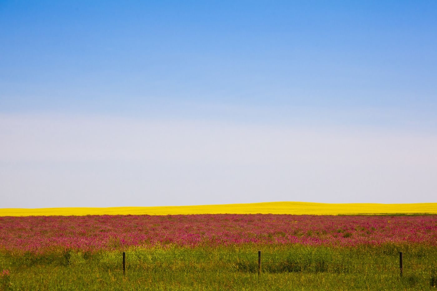 Prairie Abstract, Alberta, Canada