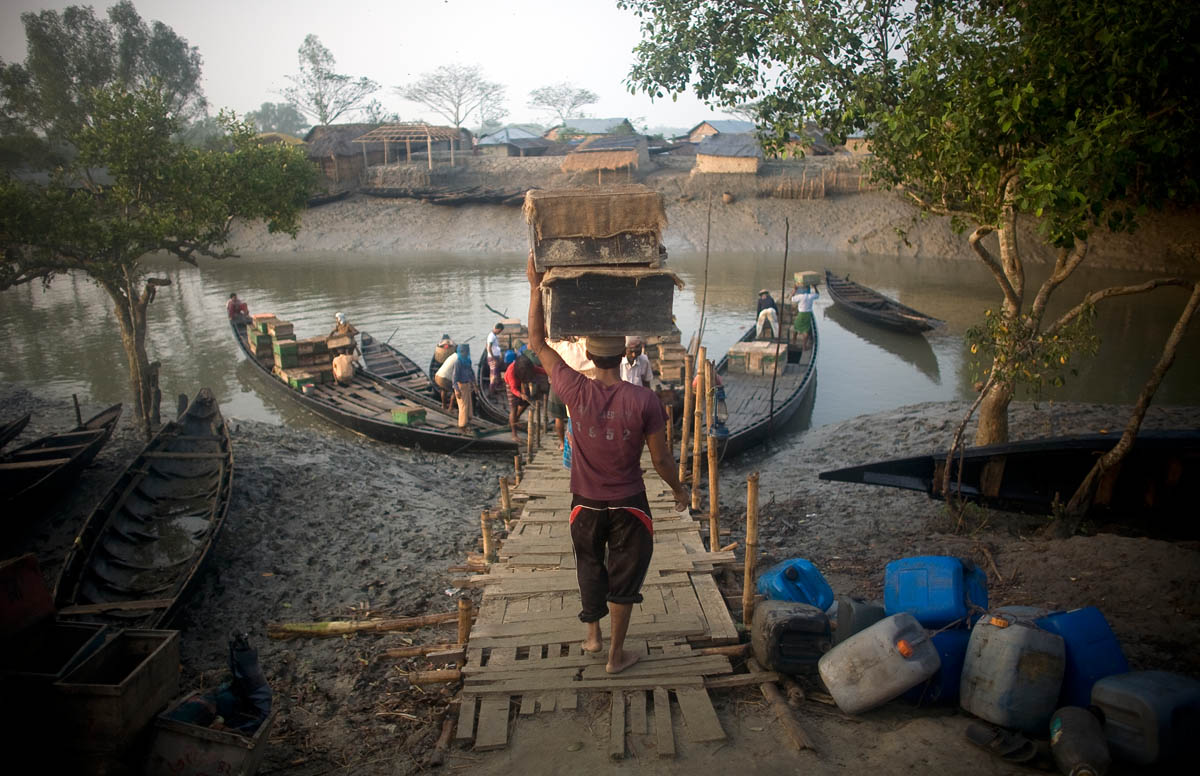 Men carry honey bee hives onto a boat at Harinagar Bazar in the Sundarbans.