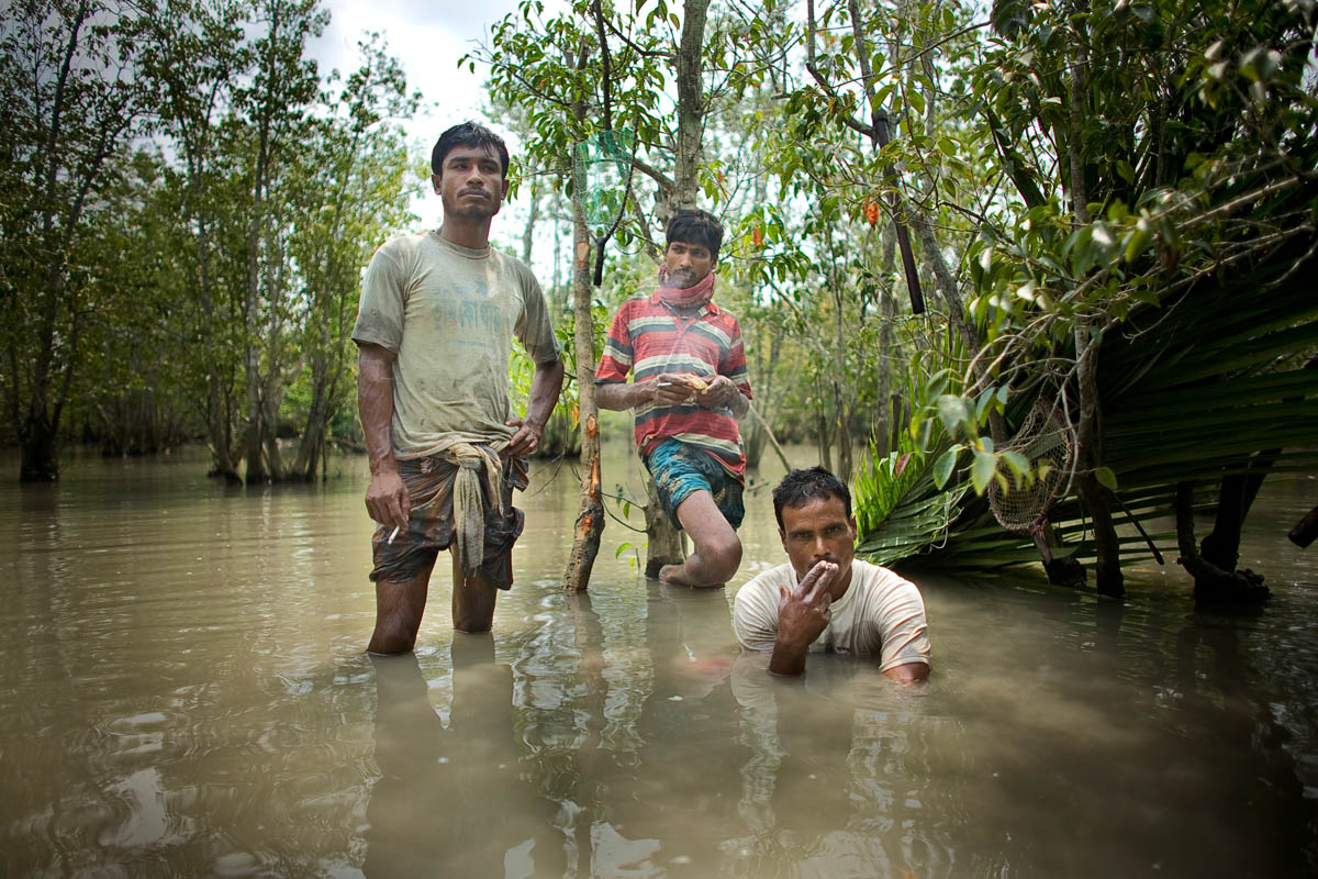 "Khalil Gazi (left) and his relatives collect crabs in the jungle just 10 months after his wife Nasima was killed by a tiger that pounced on her from behind. He drove the tiger away with a tree branch, but could not save his wife. As she lay dying on the river shore, she hugged Khalil and made him promise never to come to the forest again. She whispered to him, {quote}What will happen to our children if a tiger attacks you?{quote} {quote}I often think of Nasima when I am in the jungle and am sad when I remember how I had to carry her dead body out of the jungle. Now I have to keep living for my children because I have to educate them and try my best for them.""  Two months after Nasima's death, Khalil sought employment away from his village. He was unsuccessful in finding a job in Bandarban but eventually got a job as a laborer in Jessore, earning 500 taka (around 5 usd) per week. Illness forced him to move back to his village and he had to rely on his parents to pay 35,000 taka (324usd) for his medical treatment.  He still remains there and reports that he makes his living by collecting crabs from the canals, selling shrimp, and honey hunting.  He is worried about the tigers but feels that he has no other option. Although working as a laborer was safer, he earns more money now.  Three of his children go to school and he married Rena Begum five months ago. {quote}The first time I entered the jungle after Nasima's death I was terrified and it took 4 to 5 months for me to feel normal in the jungle again.  Since being back home in the Sundarbans I am happier than I was before.{quote}"