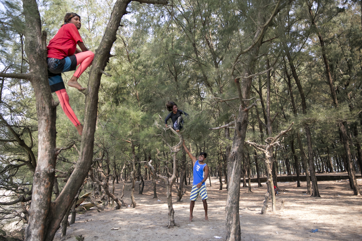 Rashed teases Aisha by shaking her tree