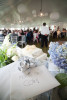wedding-photographers-maine-50