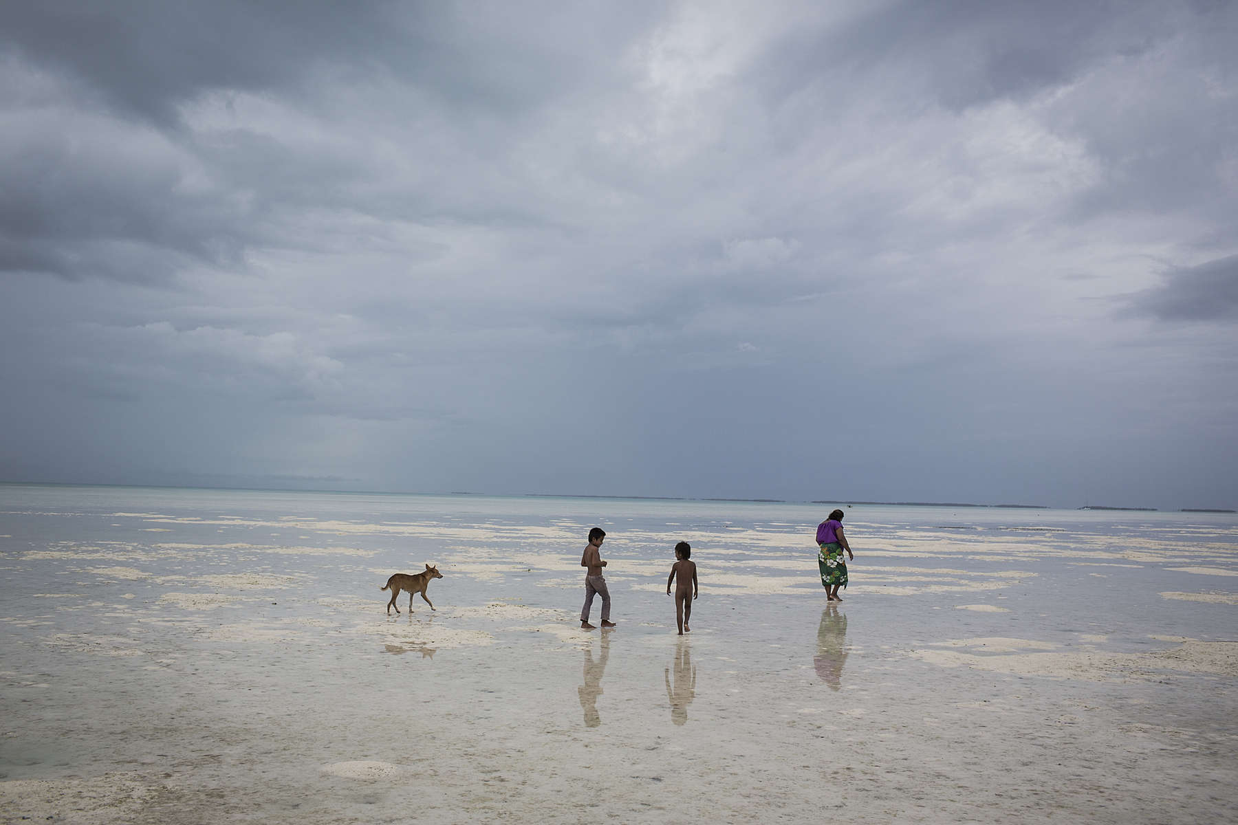 A mother accompanied by her children and a dog search for crabs  along a sand bar that is exposed during a large low tide on South Tarawa island, Kiribati.