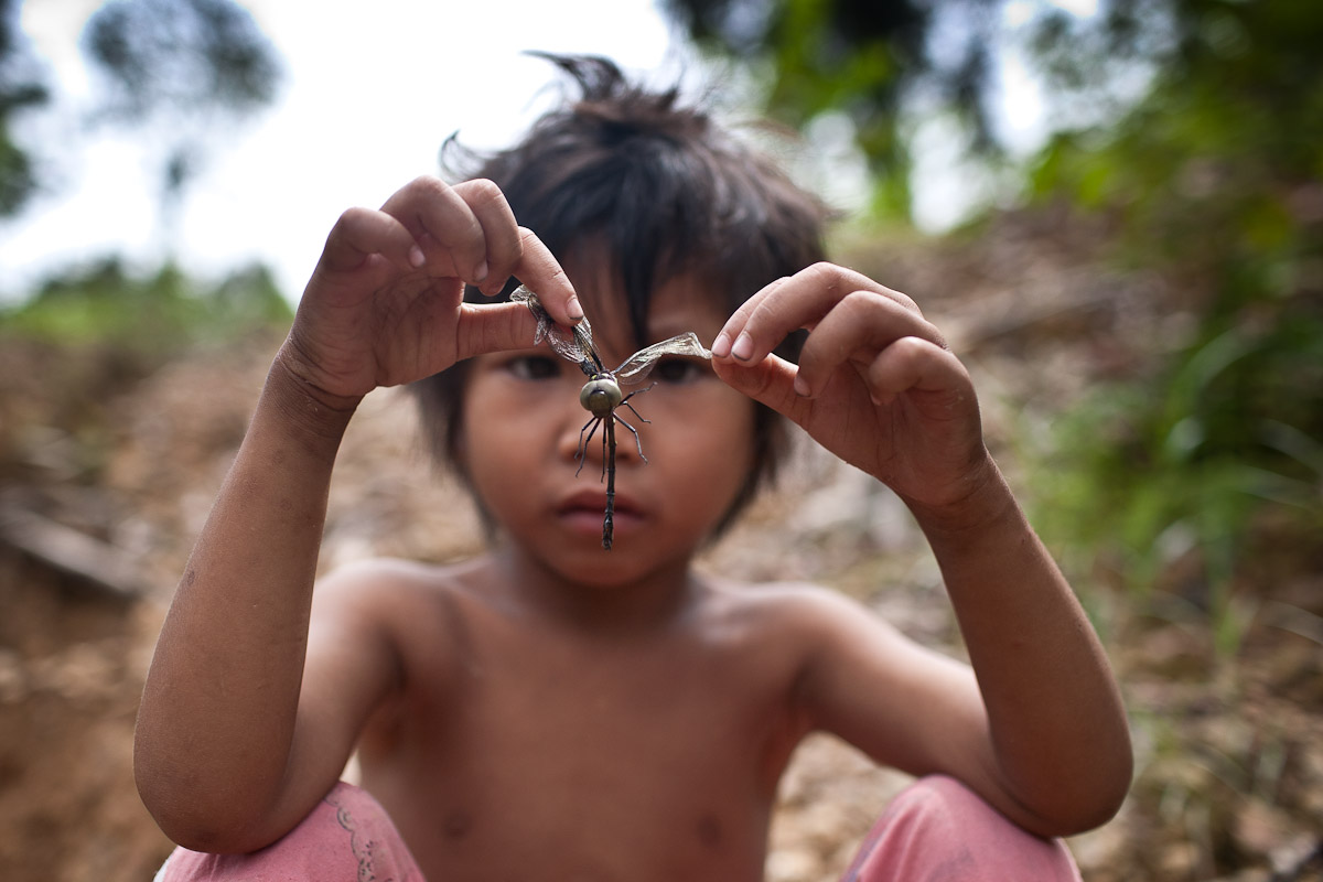 Bapa Sagun's youngest daughter, Christina Lily Sagung, plays with a dragonfly at the edge of the only remaining water source- a result of the constant logging in the neighbouring forest.