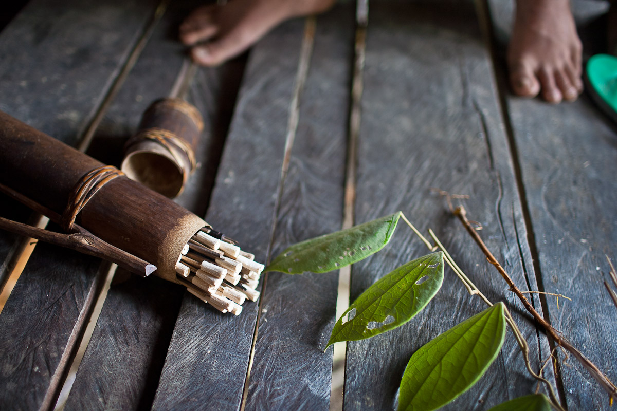 Poison darts are carried inside a bamboo case by the Penan and taken whenever one leaves the camp.