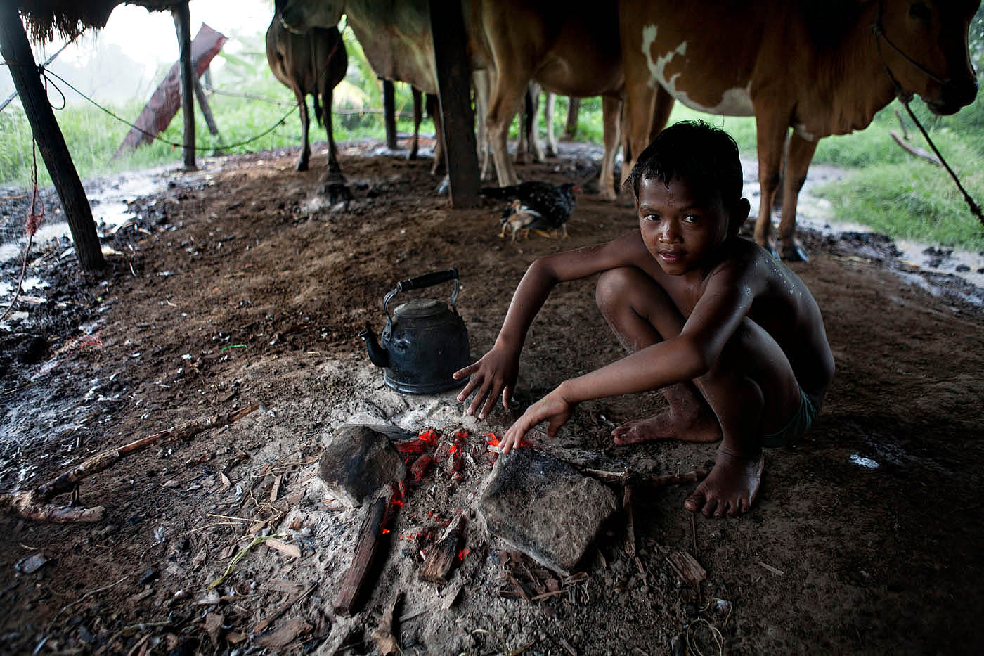 Caught outside while tending his herd of cows, a young boy warms himself next to the cooking fire of his family's home in northwestern Cambodia on September 18, 2009.  Banteay Meanchey Province, a long-time refuge of the Khmer Rouge, is still undergoing land-mine removal.