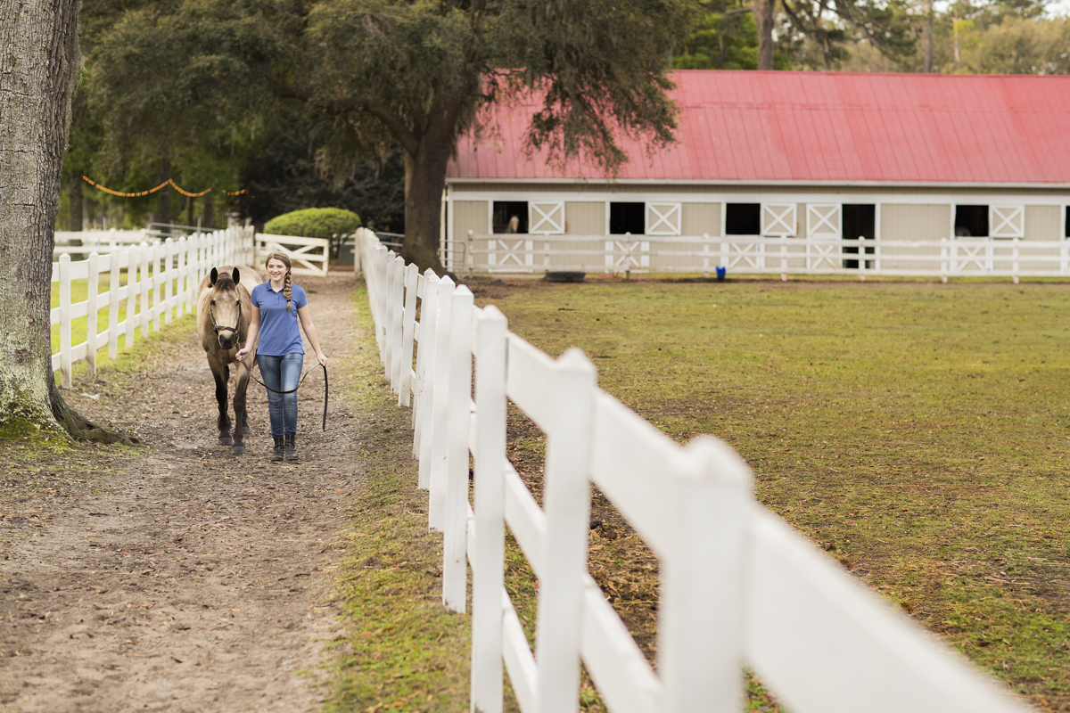 A girl walks her horse around the trail at the stables.
