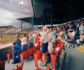 WEB_Baseball_Apledge