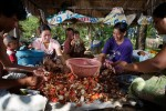 From left to right: Nong Dtik, Nong Jaew, Pii Dii, Jah Dtun with grandchild, Pii Bow with child, and Pii Nong clean and sort the days crab catch. After taking meat for the days meal, this catch produced 6.5 kilos of crabmeat and was sold for 1,126 Baht, roughly $37.50 US.
