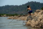 A Thai fisherman uses a typical net fishing technique to fish off the banks of the Mekong River.
